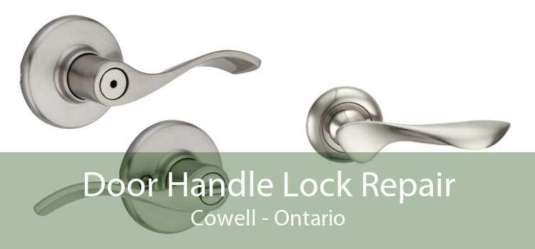 Door Handle Lock Repair Cowell - Ontario