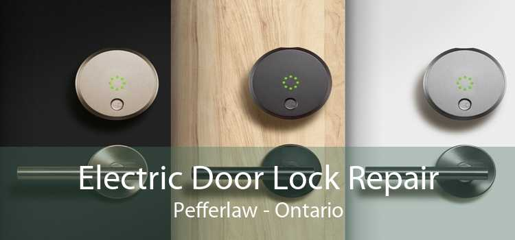 Electric Door Lock Repair Pefferlaw - Ontario