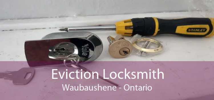 Eviction Locksmith Waubaushene - Ontario
