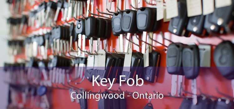 Key Fob Collingwood - Ontario