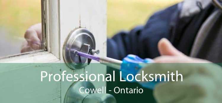 Professional Locksmith Cowell - Ontario