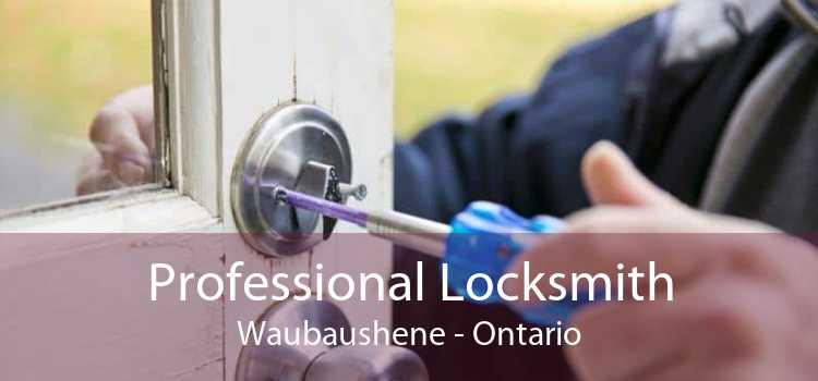 Professional Locksmith Waubaushene - Ontario