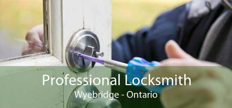 Professional Locksmith Wyebridge - Ontario