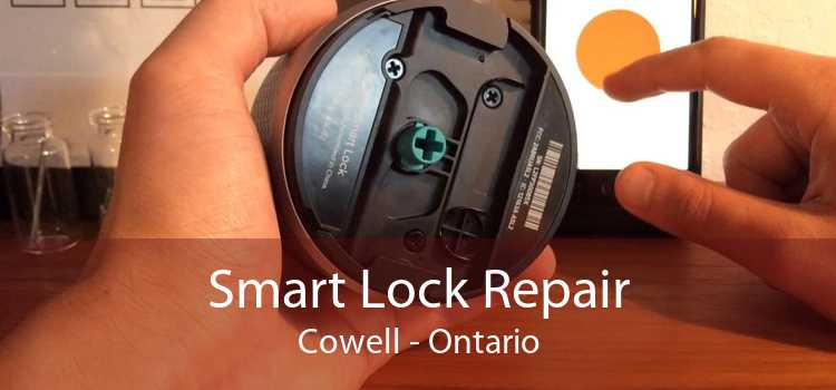Smart Lock Repair Cowell - Ontario